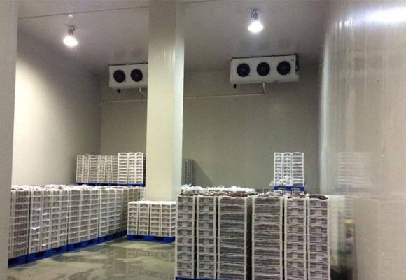 水果气调库安装工程