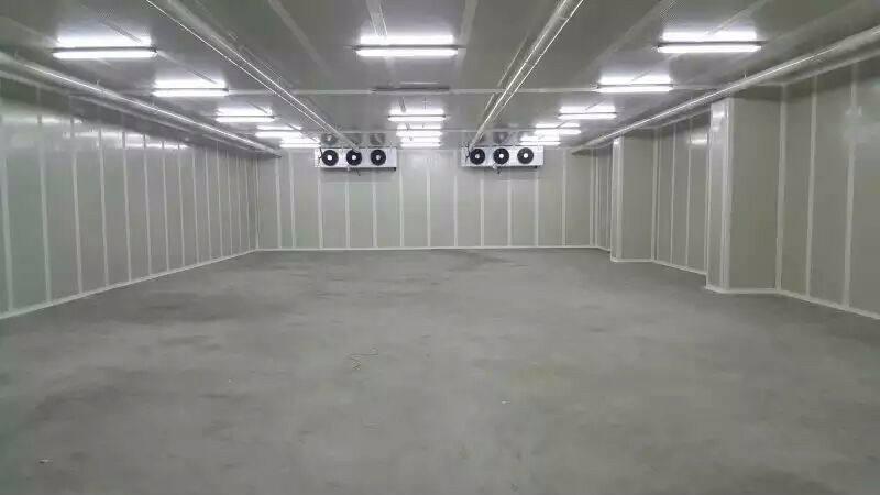 大型气调库设计安装
